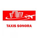 TAXIS SONORA FACTURACION LOGO H