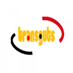 TRANSGUTS FACTURACION LOGO H